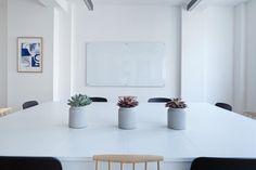 🌞 Chairs empty interior design pot plants - get this free picture at Avopix.com    📷 https://avopix.com/photo/57511-chairs-empty-interior-design-pot-plants    #room #interior #home #house #furniture #avopix #free #photos #public #domain