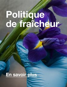 Lush France Cosmétiques Frais Faits Main