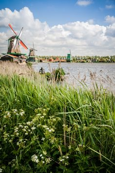 Zaanse Schans, The Netherlands   by Dan Kamminga, #greetingsfromnl