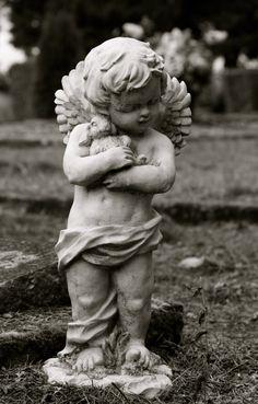 Garden Statue Cherub Angel Little boy holding his by SandraLynns