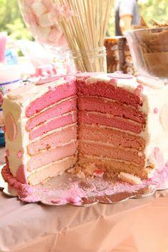 Ombre Cake Tute