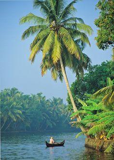 #Backwaters #Kerala