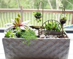 My Big Crush on Miniature Gardens (and Winner Announced!)   Less Than Perfect Life of Bliss   home, diy, travel, parties, family, faith