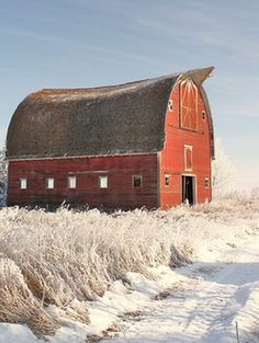 Winter on the farm.  The old red barn looks Beautiful against the white snow