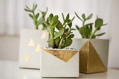 DIY to Try: Cement + Gold Leaf Planter Ruffled