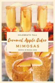 Celebrate Fall With Caramel Apple Cider Mimosas! These Caramel Apple Cider Mimosas are decadent, delicious and perfect for fall! As you know, I love a good mimosa recipe, and this is my favorite one for the holidays! Cider Cocktails, Fall Cocktails, Cocktail Drinks, Cocktail Recipes For Fall, Keto Cocktails, Brunch Drinks, Christmas Drinks, Holiday Drinks, Starbucks Fall Drinks