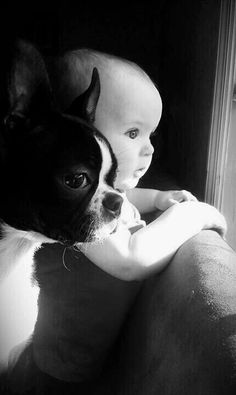 The delightful combination of dogs and babies.