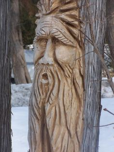 Tree spirits are carved right into the side of a living tree. These are based on a wise old man archetype. Perhaps like the native indians who considered all living things to possess a spirit, these carvings represent the creator's or life spirit.