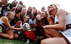 UGA VIII Makes His Debut As University Of Georgia's Mascot http://www.payscale.com/research/US/School=University_of_Georgia_(UGA)/Salary/