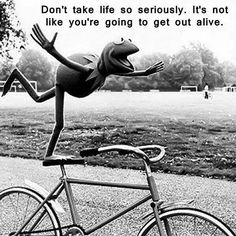 Kermit - don't take life so seriously, it's not like you're going to get out alive.