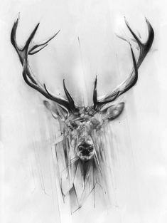 Red Deer Art Print by Alexis Marcou Hirsch Tattoos, Hirsch Tattoo Frau, Raabe Tattoo, Fenrir Tattoo, Stag Tattoo, Antler Tattoos, Petit Tattoo, Drawn Art, Bild Tattoos