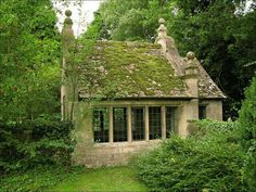Mossy old house