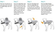 dog anxiety wrap pattern - Google Search