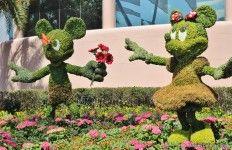 Mickey and Minnie Mouse, future world, epcot international flower and garden festival, epcot, walt disney world