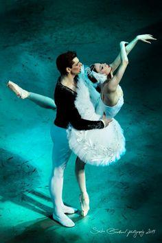 Victoria Tereshkina and Vladimir Shklyarov - Swan Lake, Baden Baden, Germany - 2013