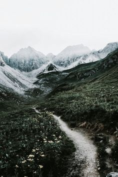 Untamed lands | The North Realm // I remember hiking up a trail that looked similar to this. What a wonderful time it was to get away from everyone