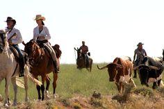 Veredas de Moratalla #caballos #jinetes #reses #naturaleza