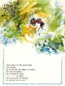 Anemone: Doina Botez - Intamplari din gradina mea Anemone, Eh Shepard, Harry Clarke, Maxfield Parrish, Aubrey Beardsley, Kay Nielsen, Illustrators, Children, Young Children