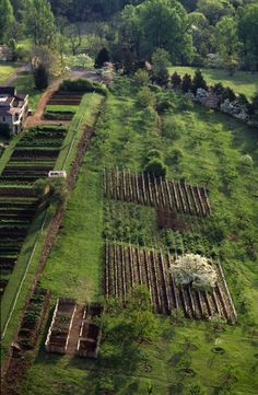 Aerial of the South Orchard, Vegetable Garden, and Vineyards at the Monticello Gardens