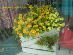 Caixotes de feira com flores na vitrine.