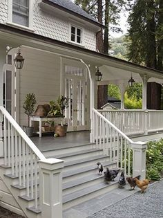 Awesome big wraparound porch with wide steps make a perfect country porch.