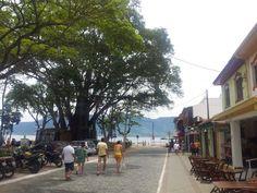 Ilhabela, São Paulo, Centro da Ilha- Nathalia Molina comoviaja.com.br (10)