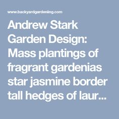 Andrew Stark Garden Design: Mass plantings of fragrant gardenias star jasmine border tall hedges of laurel pears. Five very special urns are dotted throughout the tiny space and are planted with English box spheres. - Backyard Gardening