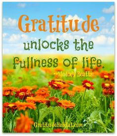 Grateful.  Experience the fullness of life. Visit us at: www.GratitudeHabitat.com #gratitude-quote #Melody-Beattie