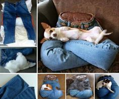 Pillow Pet Beds And More For Your Furbabies