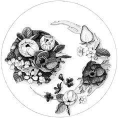 花の食卓   THe Flower Gastronomy   2015   Ink, Paper「花を贈ること」は、他者に対する祝いや感謝、愛の表現として広く行われてきました。また、美しくおいしい食事を通して人を祝うことも、私たちにとって当たり前のことです。しかし、「花を食べる」ことは人間にとってなぜか抵抗のある行為です。「花」と「料理」という、普段は交わらない寿の要素を皿の上であえて組み合わせ、四季それぞれに想像した花料理を描き、不思議な「祝い」の場面を映し出します。どんな香りや味がするのか、どんな時に食べるのか?想像してみてください。