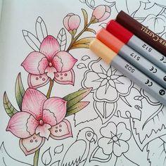 """Bom dia!!!! ✨ inspiração de combinação de cores para orquídeas AMEI!! Uma excelente semana a todos! Que seja cheia de cores lindas ☺️ """"Todo aquele que afirma que Jesus é o Filho de Deus, Deus vive unido com ele, e ele vive unido com Deus."""" 1João 4:15 ❤️ @adrianaespadoto"""
