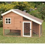 The Cape Cod Chicken Coop is our most stylish Coop and is so versatile and spacious. This two-tiered chicken coop is crafted with solid wood construction with asphalt shingle roof for added weather protection and low maintenance.