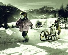 Go sledding