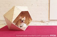 DIY Geometric Wooden Dog House