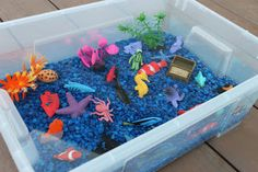 Playing House: Ocean Sensory Bin