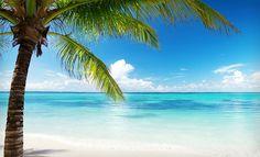 Crystal Palms Beach Resort – Treasure Island, Florida