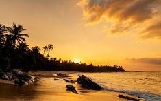 Grandeur of the Seas explorará el Caribe Sur desde su nuevo puerto base en Barbados en 2021. Analizamos todos los detalles de los itinerarios, escalas y fechas previstas para temporada de invierno 2021/2022. #cruceros #viajar #cruises #royalcaribbean #Grandeuroftheseas #Barbados Oranjestad, Willemstad, Bridgetown, Royal Caribbean, Barbados, Trinidad Y Tobago, Base, Celestial, Sunset