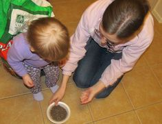 Planting flowers with kiddos