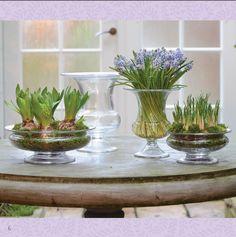 Fine ting fra Holmegaard. Claus Dalby har designet vaserne.