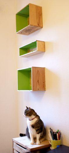 Comment fabriquer des étagères avec des caisses ? Wine boxes - comment fixer un meuble au mur