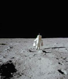 funny lunar astronaut shopping