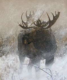 BoldBrush Painting Competition Winner - July 2015 | Winter Moose in Willows by Charity Dakin