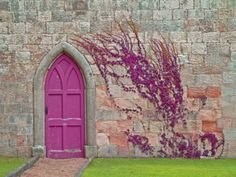pink door on stone wall