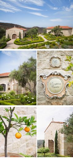 Wedding Venue Cal-a-Vie, photos: Jen Wojcik Photography