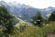 Manigod en été - Haute Savoie, France