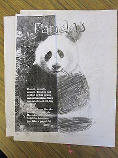 Art Explorium: 5th grade