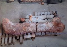 'World's biggest dinosaur' discovered in Argentina.  Cool article.    RocksInMyHead™ is the World's Greatest Rock, Prospecting & Outdoor Education Company.   For gold prospecting, rockhounding, lapidary and geology tools, and jewelry making supplies, equipment, books, maps, great outdoor gear, plus lots of great rocks, minerals, fossils, & meteorites, go to our website http://RocksInMyHead.com.