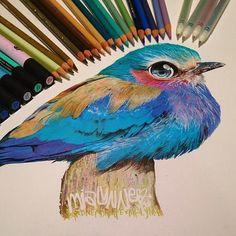 pintura com lapis de cor - Pesquisa Google