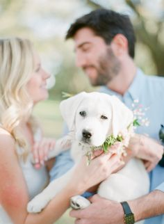 A dreamy engagement session with the most adorable puppy ever: http://www.stylemepretty.com/2017/05/26/a-dreamy-charleston-engagement-with-the-cutest-ever-pup/ Photography: Julie Livingston - http://www.julielivingstonphotography.com/
