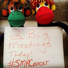 Two big meetings today. #smacancer